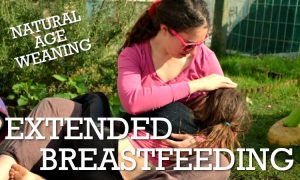 Extended Breastfeeding: Natural Age Weaning